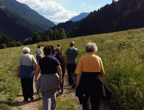 Gruppi in cammino